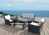 Новая установленная софа сада - Wicker напольная мебель (BP-588D)