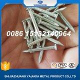 Galvanisierte Nägel, Stahlnägel, Stahl 55# nagelt Fabrik