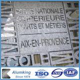 La decoración de la casa de espuma de aluminio Material elemento metálico Arte