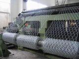 熱い浸されたGlvanizedの六角形の金網の工場
