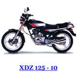 Motocicleta - XDZ125-10