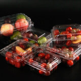 Caixa de plástico descartáveis embalagens blister alimentos congelados a caixa de contentores