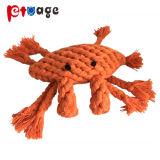 Hochwertige Befestigungsklammer-Baumwolseil-Molar-Haustier-Spielwaren für Hund