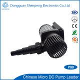 pompe à eau submersible élevée principale de C.C de 5-8m Effciency