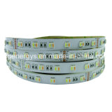 DC24V 5050 SMD LED RGBW+Ww 60/m faixa de LED Light