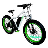 脂肪質のタイヤの電気マウンテンバイク48V 500Wの電気自転車の雪の自転車