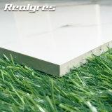 60X60 Baumaterial-Fassade-bester Preis-elegante Fliese