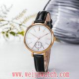 Orologi caldi delle signore del quarzo di modo OEM/ODM di vendita (Wy-17031)