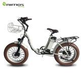 Bici elettrica della gomma grassa di Changzhou Aimos con la cremagliera anteriore