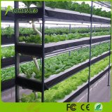13.5W LED de amplio espectro de luz crecer la luz solar natural para invernadero hortalizas Flores