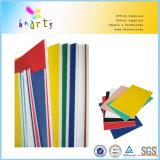 Vario color que hace publicidad de la tarjeta de la espuma del picosegundo