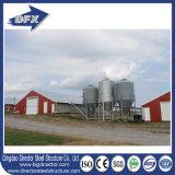 Chambre de ferme avicole de constructions de ferme de bâti en acier de directeur Economic Design de Qingdao pour le poulet