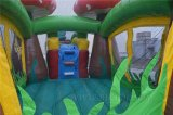 Waterslide-kommerzielles aufblasbares kombiniertes, Erdbeere-EntwurfMoonwalk, Luft-Ballone