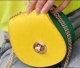 대중적인 사탕은 숙녀 어깨에 매는 가방 Crossbody 핸드백을 착색한다 Messenger Bag