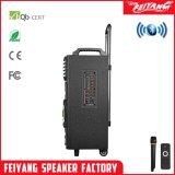 """12"""" Bluetooth громкоговоритель Qx-1212 аккумуляторной батареи"""