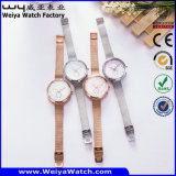Vigilanza classica di vendita calda di affari della vigilanza (Wy-091A)