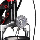 Pantalla LCD colorido bicicleta eléctrica con una amplia el manillar.