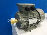 0.18~ 315 кw, 2~10 полюсов трехфазного электродвигателя