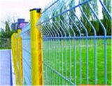 Qualitäts-bestes Preis-schönes Puder-überzogener Sicherheits-Ineinander greifen-Zaun