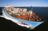 Cheap& drücken &Shipping Seeberufsluft/von Shanghai nach Indien aus
