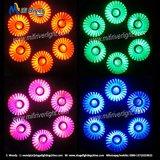 Heißer Verkauf 6PCS X 12W RGBW 4 in 1 flachem dünnem LED-NENNWERT Light