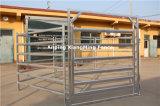 L'Australie populaires des barres en acier galvanisé 6 Gare de triage de bovins de bord (XMM-CP007)