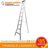9 stappen Ladder van het Metaal van het Lassen van de Driehoek van 2.97 Meter de Enige Staaf Omgekeerde Agronomische