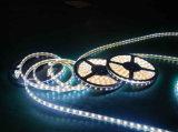Flexibles SMD5050 LED Streifen-Licht der kühlen weißen Farben-mit Cer und RoHS