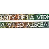 Regalo promocional Logotipo personalizado el cordón de transferencia de calor de la publicidad