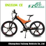 Tipo de deporte e-bici, bicicleta de montaña el motor eléctrico de la Unidad intermedia