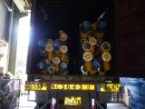 trasportatore di vite di 168mm Sicoma in pianta d'ammucchiamento concreta