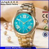 Montre-bracelet de dames d'acier inoxydable d'ODM (WY-P17005A)