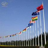 믿을 수 있는 질 스테인리스 가늘게 한 깃대 및 거대한 깃대