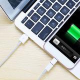 Adattatore del USB del micro di prezzi di fabbrica di Shenzhen mini per il iPhone