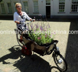 250With500W 2子供2の車輪ペット配達Bakfietsまたは全天候用柔らかいおおいのセリウムのFamily/2車輪の自転車のための電気2つの車輪配達自転車か輸送のバイク