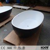 Surafceの二人用の、固体浴槽のための支えがない楕円形の浴槽