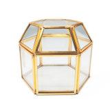 De met de hand gemaakte Buitensporige Doos van de Gift van de Juwelen van het Glas van het Metaal van de Douane