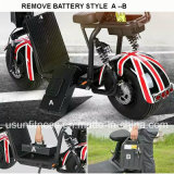 La E-Bici elettrica del motorino della gomma grassa delle due rotelle con rimuove la batteria