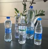 Máquina que moldea del soplo semiautomático para la botella del animal doméstico del agua