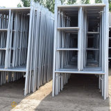 Tipo andamio de la escala con el material de acero de China