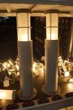 Silberne Garten-heraus Tür-Fußboden-Lampe (KM-F010/S)