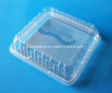 500g正方形の明確なまめのClasmshellのプラスチックフルーツの包装ボックス