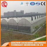 China galvaniseerde Huis van de Paddestoel van de Tomaat van het Frame van het Staal het Plastic Groene