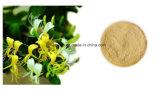 Мед Suckle кислота порошка 99% выдержки хлорогеновая