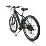 bici elettrica fuori strada per la corsa, gita, famiglia
