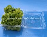 Funghi di plastica a gettare che impaccano contenitore 500 grammi