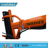Дешевые Ebike 20дюйма мини складной велосипед с электроприводом шин жира