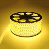 Indicatore luminoso di striscia dell'indicatore luminoso di striscia di tensione 100m 110V LED SMD 2835 LED con Ce RoHS