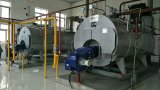Wnsのガス(オイル)の発射された蒸気ボイラか湯ボイラー