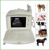 Hot Sale échographie portable bon marché pour les animaux FM-9003p